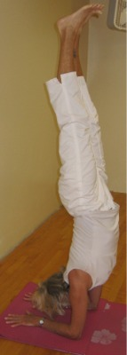 Image of Sheila in Forearm Balance